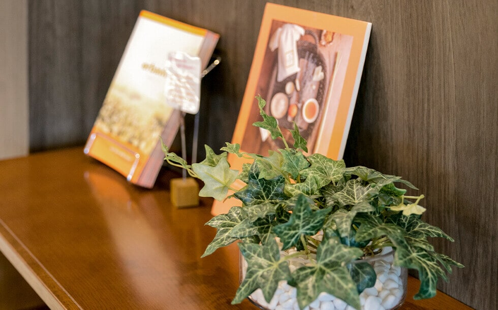 観葉植物と写真